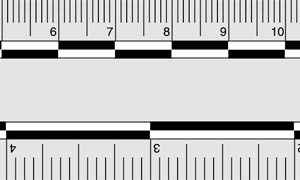 Photo Evidence Scale, Grey (PPS401)