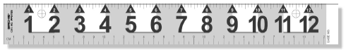 "Big Numeral Reference Scales, 12"" (PPS705)"