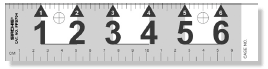 "Big Numeral Reference Scales, 6"" (PPS704)"