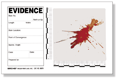 Blood Stain/Evidence Template, 15 pk. (BST1)