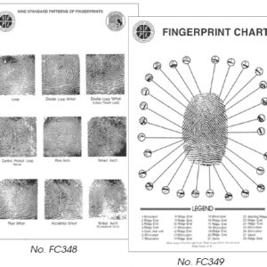 Fingerprint Pattern Wall Chart (FC348)